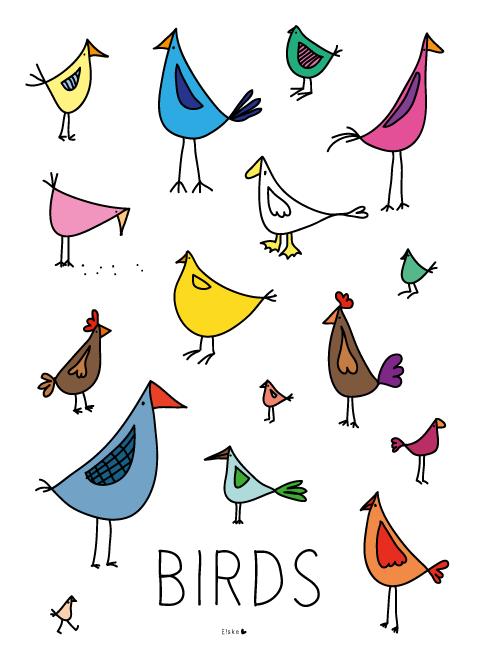 Elske birds