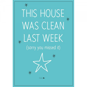 clean house poster