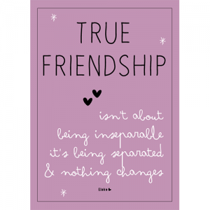true friendship shop
