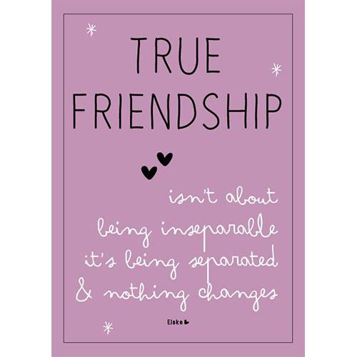 true friendship shop