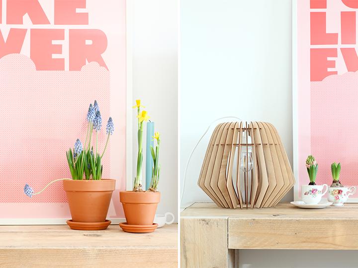 voorjaar in huis, spring