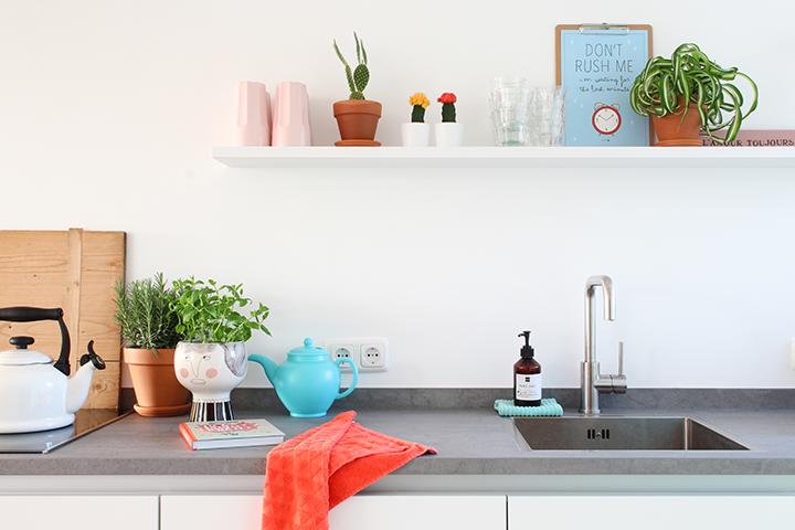 planten en kruiden in de keuken