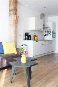 Luze appartementen in Friesland
