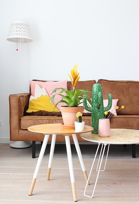 Urban Jungle Blogger bromelia