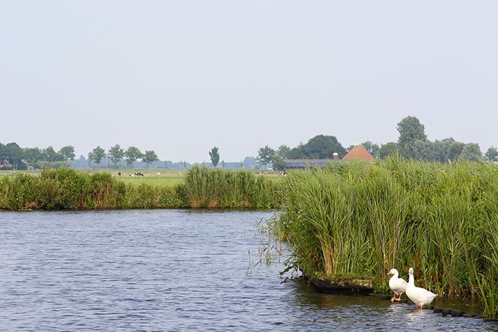 Varen door Friesland