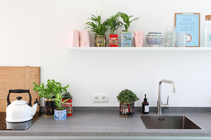 UJB creative plant pots