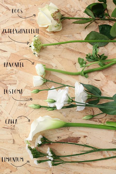 bloemen voor een wit winterboeket